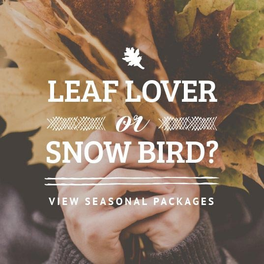 Leaf Lover or Snowbird? Click here to view our seasonal packages.